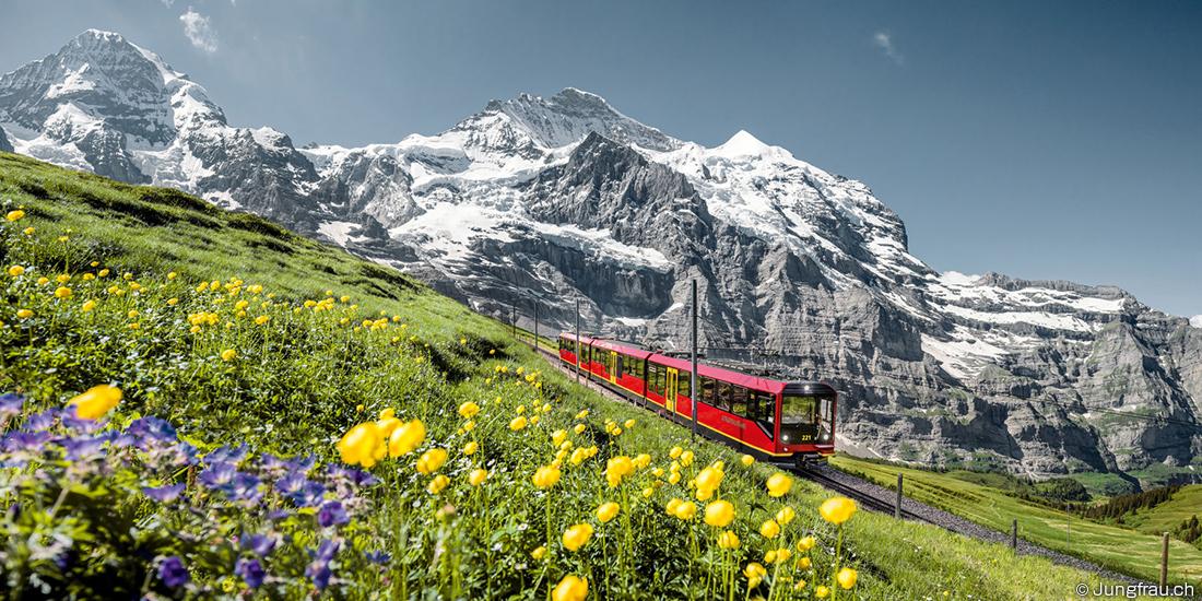 スイス 諸外国の新規化学物質審査規制制度の概要(スイス)