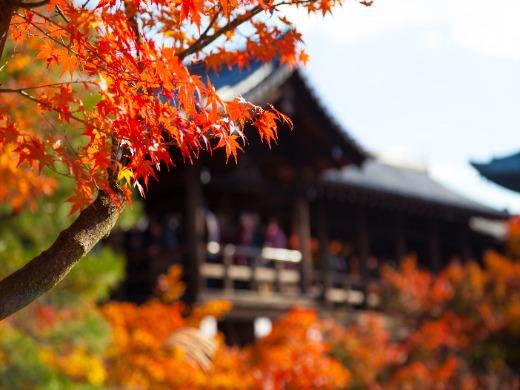 古都・京都への旅