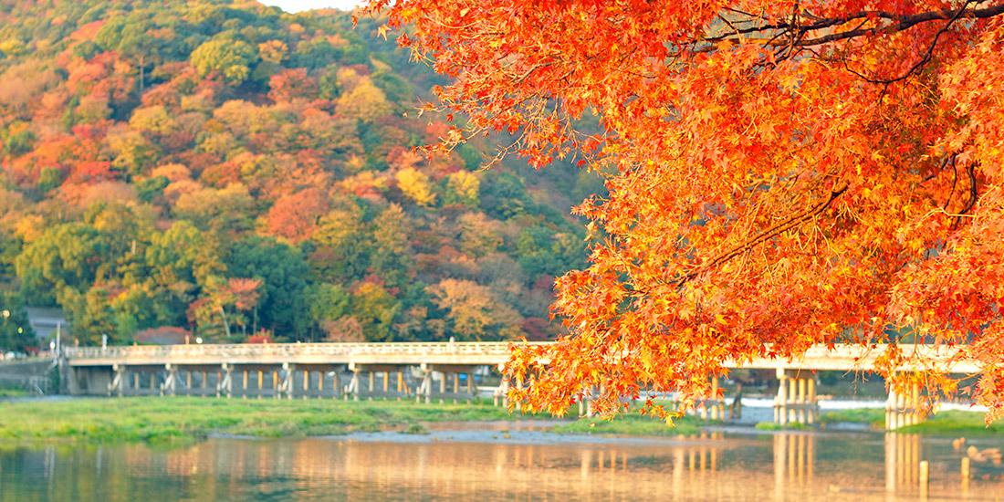 2020年11月連休におすすめ・人気の国内旅行・ツアー│近畿日本ツーリスト