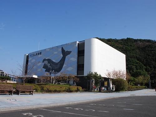 太地町立くじらの博物館