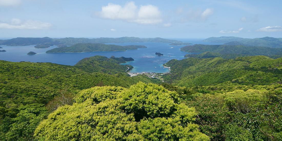 観光 奄美 大島 奄美大島のおすすめ観光スポット クチコミ人気ランキングTOP20【フォートラベル】