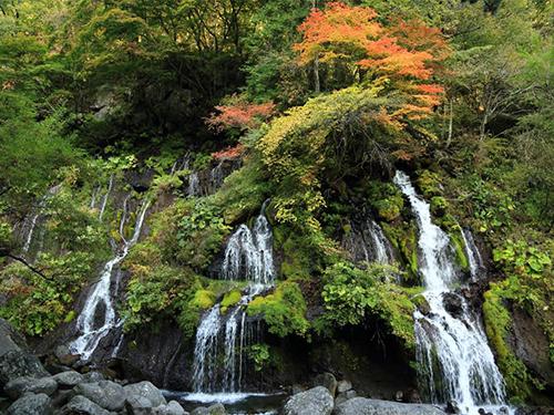 川俣川渓谷/吐竜の滝