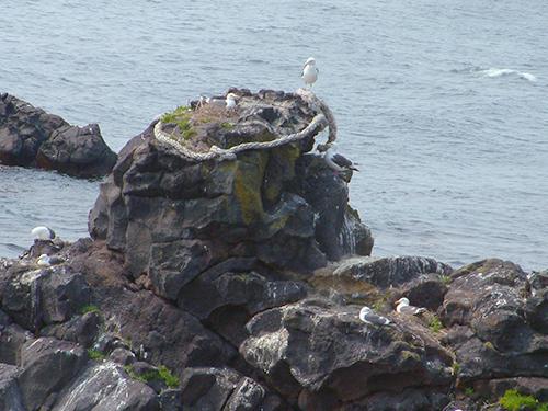 人面岩・寝熊の岩